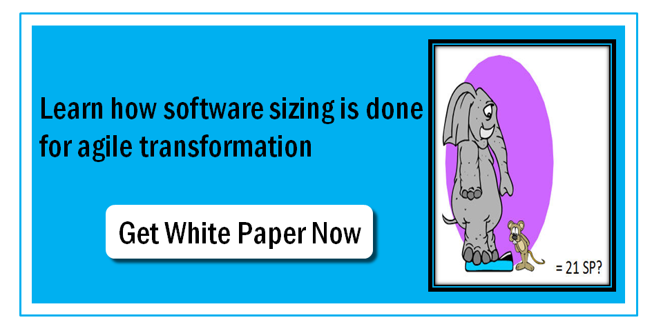 Software Sizing for Agile Transformation
